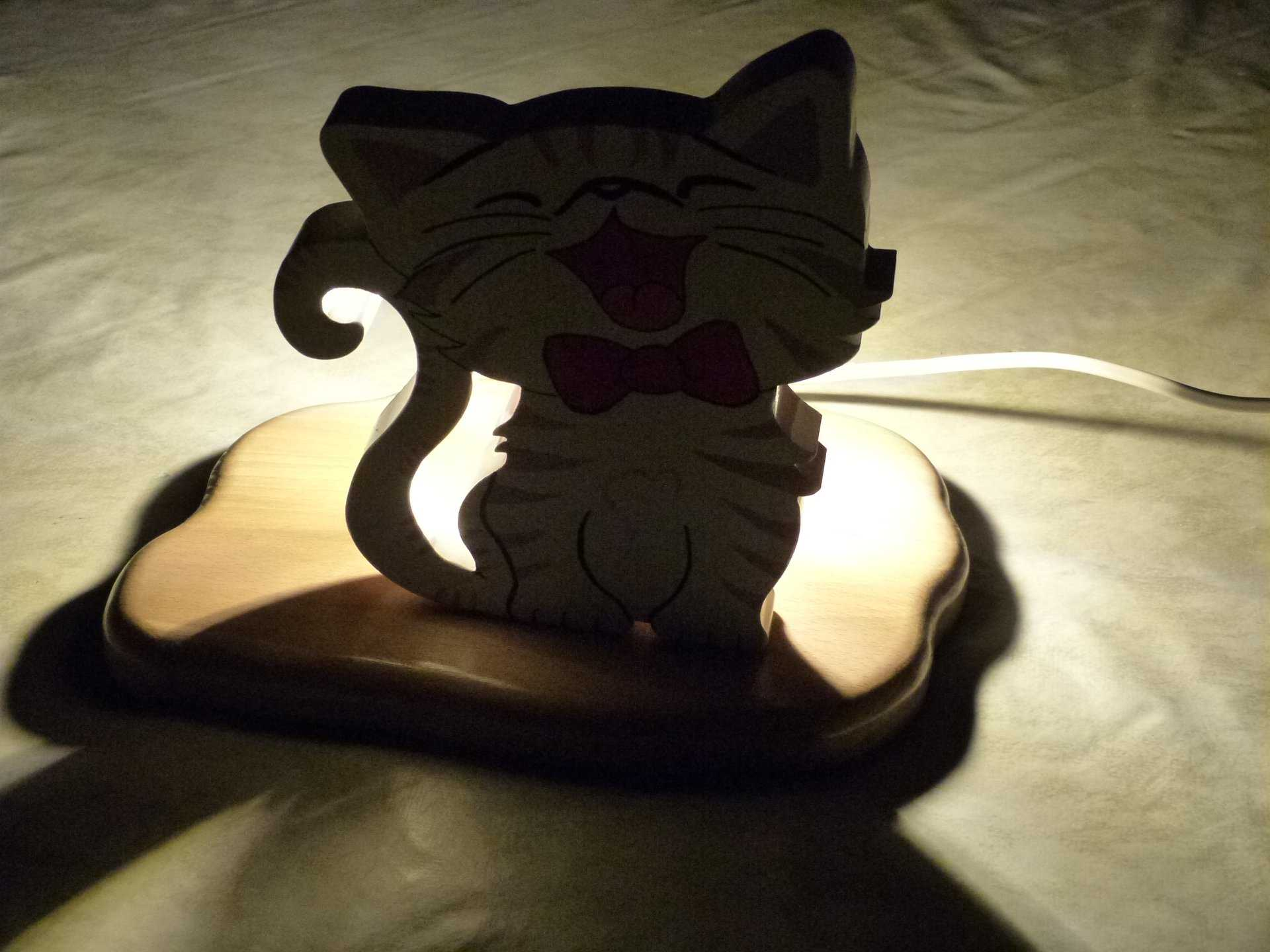 chat lampe 2